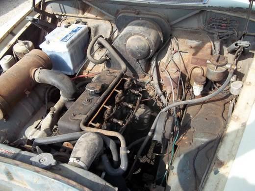 dieselamazon1963.jpg